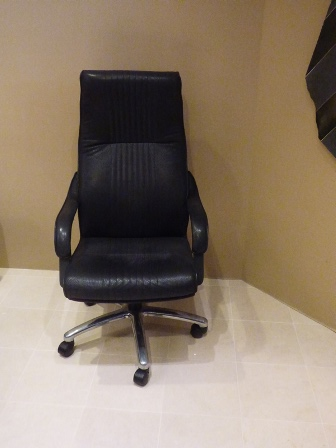 Marva's Place Office chair